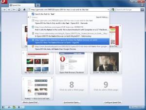 Скриншот Opera 10.50 - Строка адреса